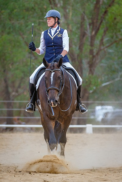 2018 King Valley Equestrian Club Dressage Championship Weekend