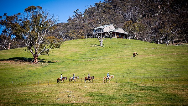 Packers High Country Horse Riding